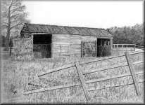 a pencil drawing of an Old Shed