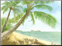 a watercolour painting of a Palm Tree near the coast